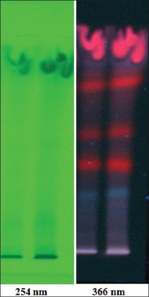 Figure 4: High performance thin layer chromatography finger printing (chloroform: methanol [9:1 v/v]) of <i>Buxus sempervirens</i> mother tincture scanned at 254 nm and 366 nm