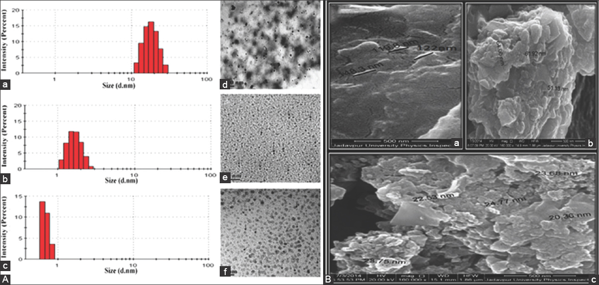 Figure 1: (A) (a) For homoeopathic medicine <i>Cuprum metallicum</i>, a metal-derived homoeopathic medicine, size distribution as estimated by dynamic light scattering measurement (a-c) and high-resolution transmission electron microscopy image (d-f). Here (a and d) are for potency 6C; (b) and (e) for potency 30C; (c) and (f) for potency 200C. (B) Field emission-scanning electron microscopy image of homoeopathic medicine <i>Aconitum napellus</i>, a plant-derived homoeopathic medicine, (a) is for potency 6C; (b) and (c) are for potencies 30C and 200C