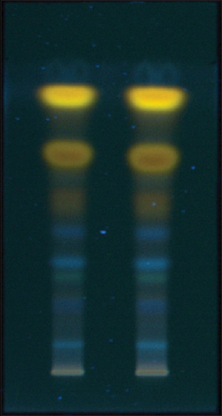 Figure 7: High-performance thin layer chromatography image of <i>Rumex crispus</i> at 366 nm in hexane:ethyl acetate (6:4 v/v)