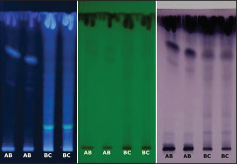 Figure 1: AB: Authentic in-house; BC: Commercial. Left: 254 nm, Middle: 366 nm, anisaldehyde-sulphuric acid stain